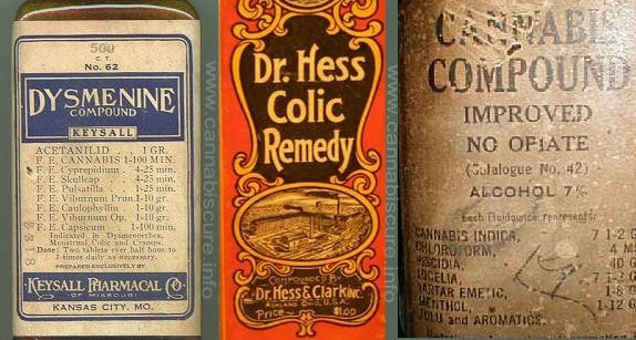 How to make Cannabis Alcohol Tincture - Recipes & Tips