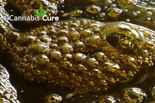 Medical Cannabis Oil Information - Cannabis Cure